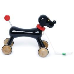 Nachzieh Hund Némo