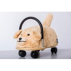 Hund klein
