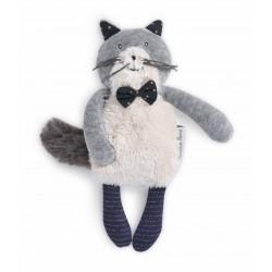 Katze Kater Fernand /...